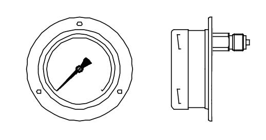 đồng hồ đo áp suất chân sau vị trí 12h có mặt bích