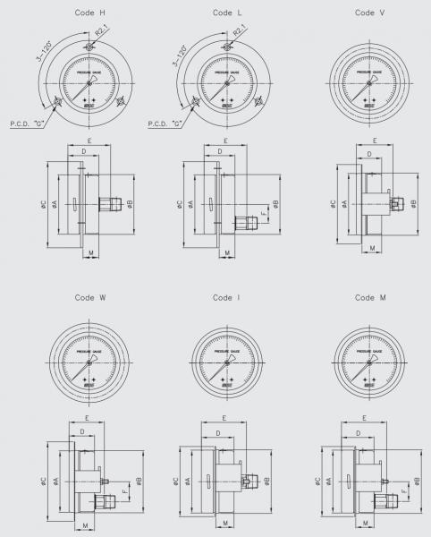 thông số đồng hồ đo áp suất wise 2