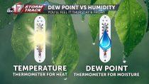 Cảm biến nhiệt độ điểm sương là gì? Tại sao nên đo nhiệt độ điểm sương?