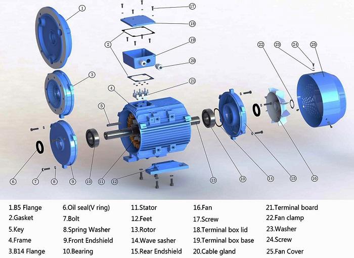 Cấu tạo motor là gì?