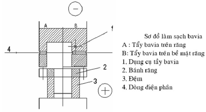Minh họa chi tiết về phương pháp tiến hành