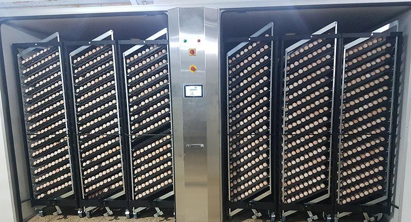 Hệ thống điều khiển và giám sát lò ấp trứng từ xa