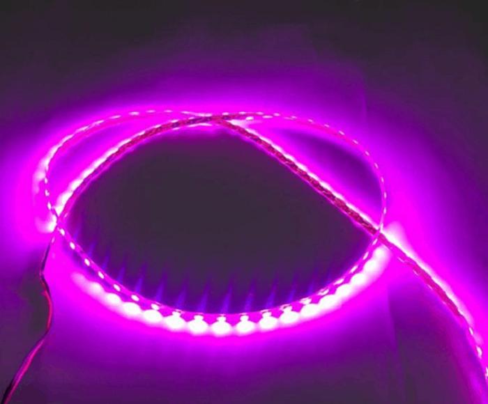 Đèn LED trang trí đa dạng về mẫu mã và dòng sản phẩm