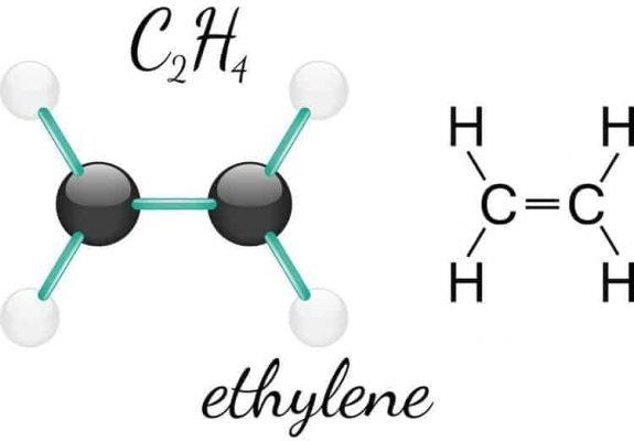 Ethylene là khí gì?